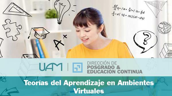 Teoría del Aprendizaje en Ambientes Virtuales
